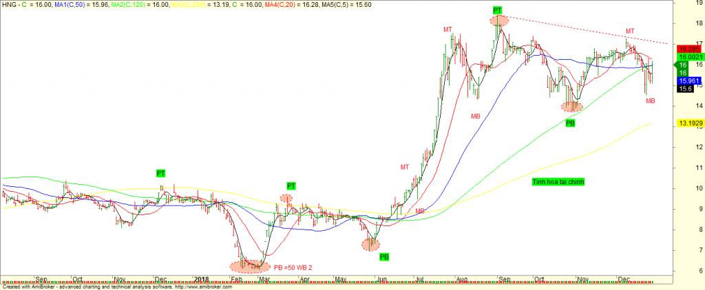 Chu Kỳ cổ phiếu HNG